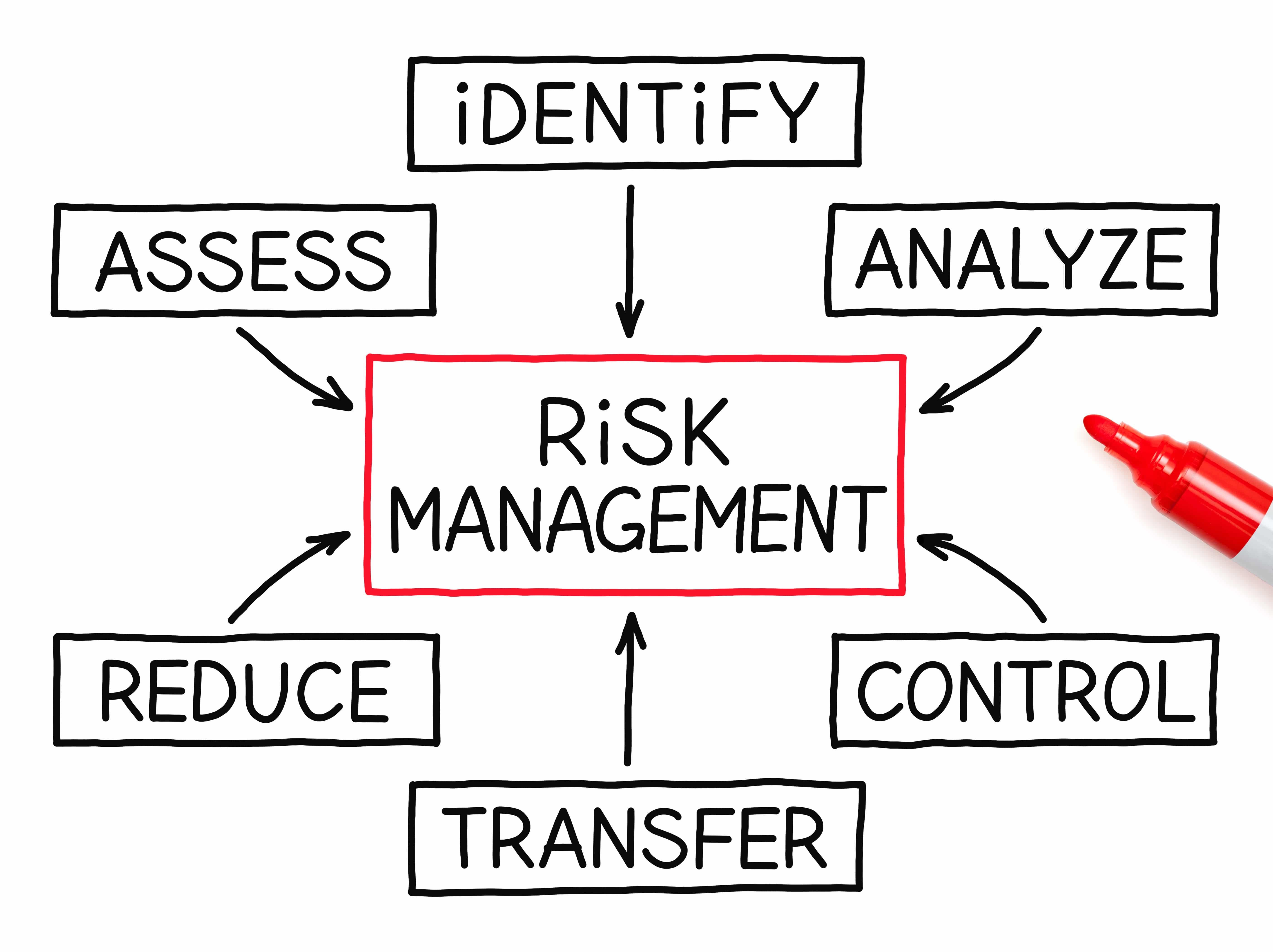 flow chart risk management